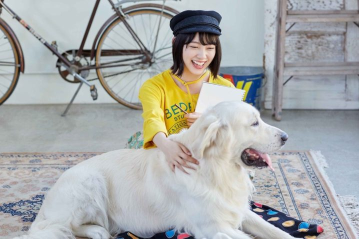 乃木坂46・ペット保険のアイペット『犬と、猫と、乃木坂と。』第3話