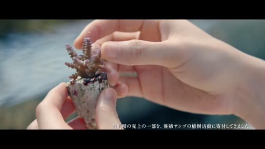 岩田剛典/コーセーCM「雪肌精 僕と一緒に、SAVE the BLUE」篇