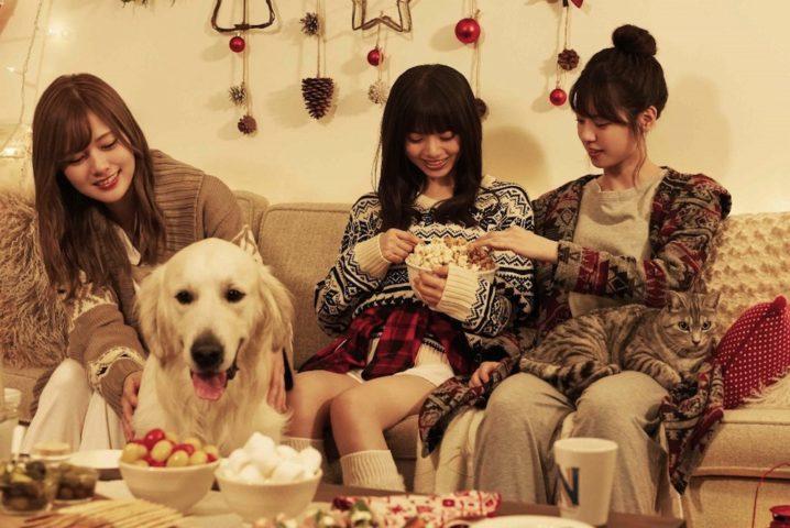 乃木坂46出演『犬と、猫と、乃木坂と。』第5話(乃木坂46メンバーがクリスマスパーティー開催!)