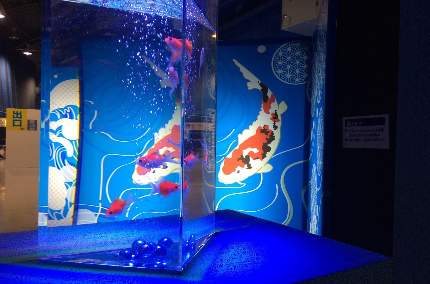 『GOLDFISH AQUARIUM』宇都宮PARCO~金魚と光で彩るミニ水族館~